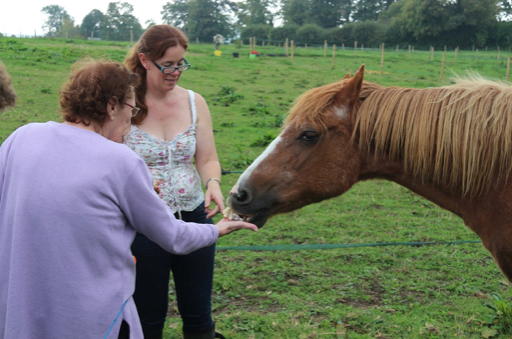 Abbi, Founder of Helping Hooves UK with one of the horses
